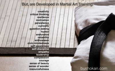 What you gain by training Aikido